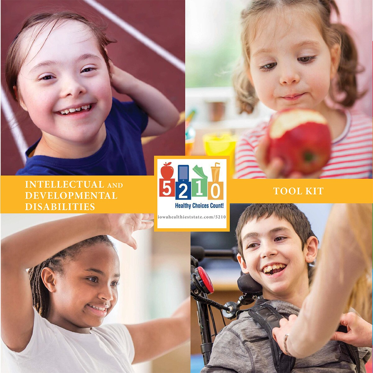 5210 Healthy Choices Count!, Iowa, American Academy of Pediatrics - Intellectual and Developmental Disabilities Tool Kit Cover Image